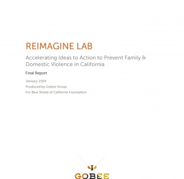 Reimagine Lab Final Report